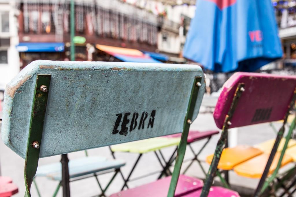 Zebra bar-4