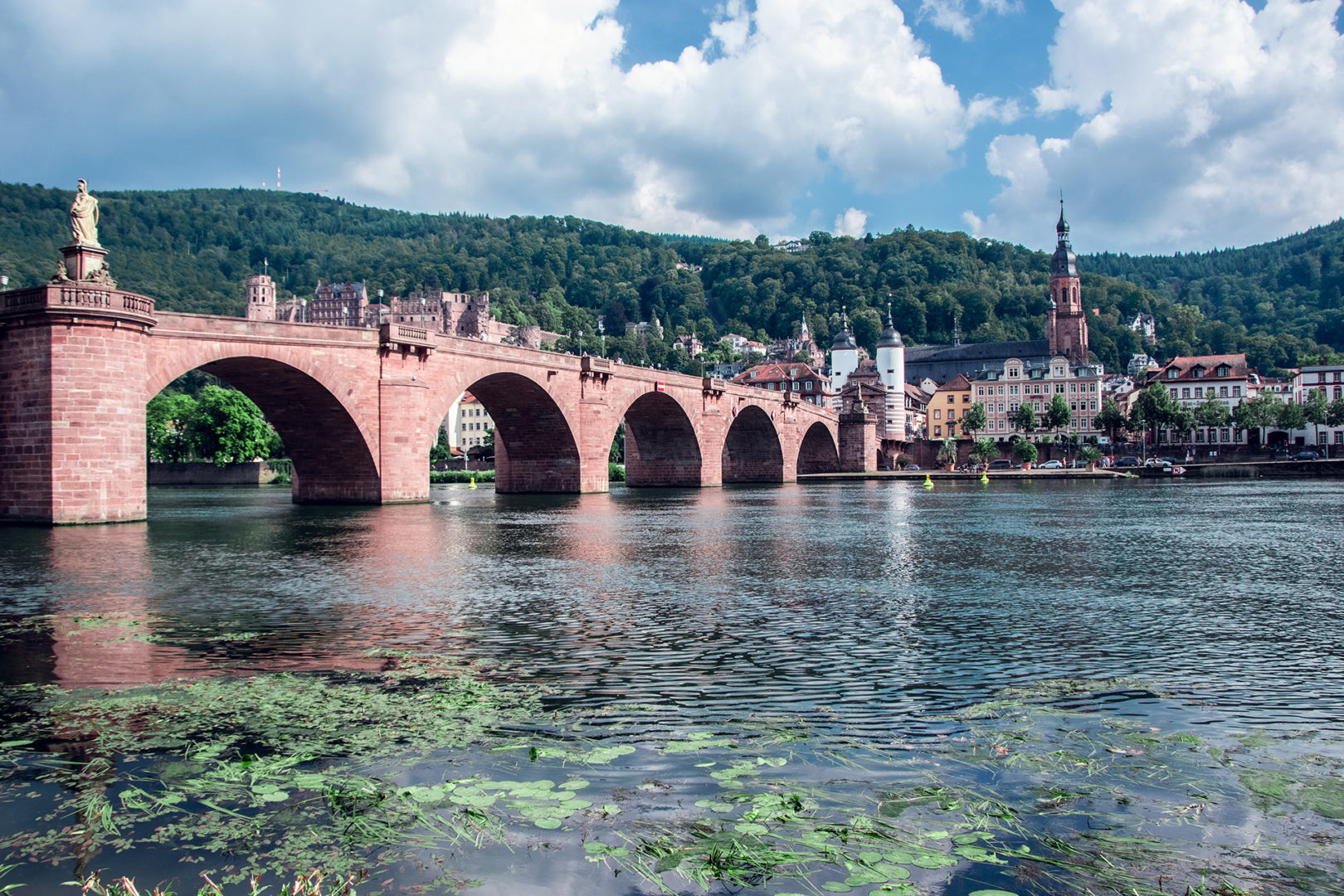 Fun Facts Heidelberg