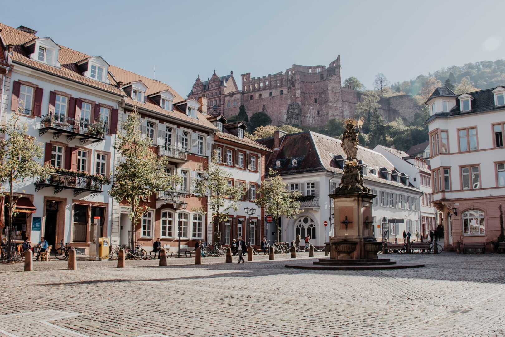 Heidelberg In a Day