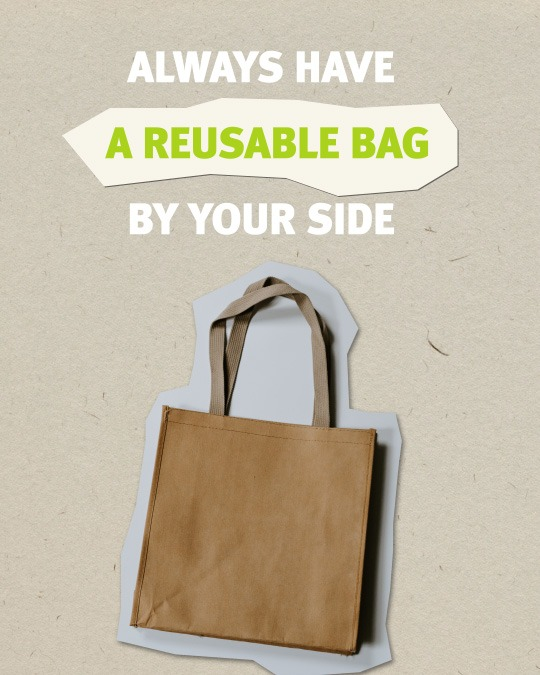 Sustainable Travel Tips - use reusable bag